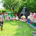 Spotkania z przyrodą w Przedszkolu Słoneczny Domek